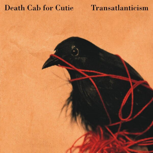 dcfc_trans-cover
